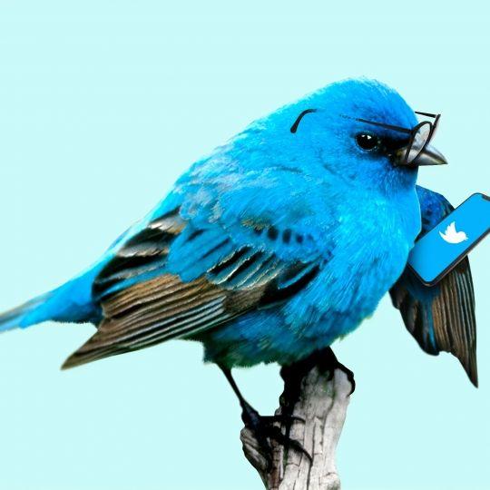 Últimas novedades en Twitter