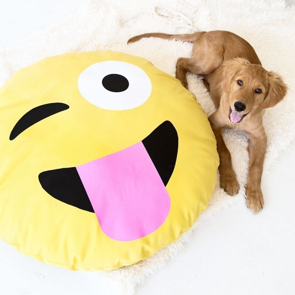 emoji-dog-bed