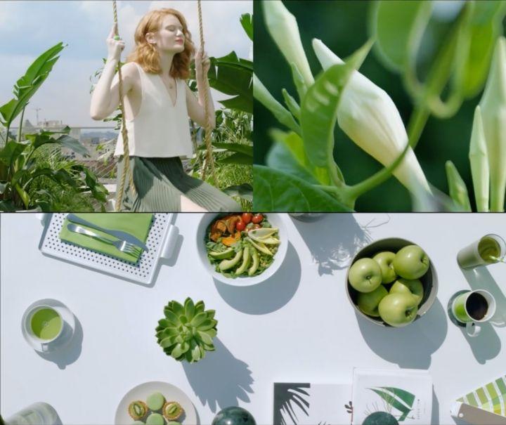 greenery_video