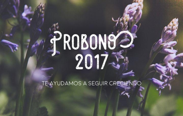 Proyecto PROBONO 2017