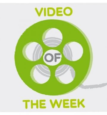 VIDEO OF THE WEEK: el panda perdido