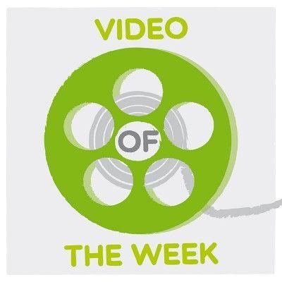VIDEO OF THE WEEK: el panda perdido
