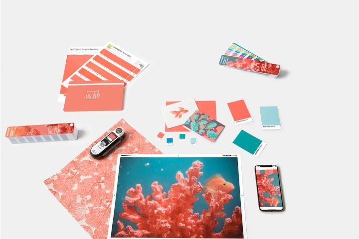 Living Coral, el color de 2019